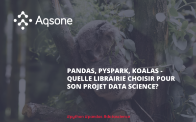 Pandas, Pyspark, Koalas – Quelle librairie choisir pour son projet Data Science ?